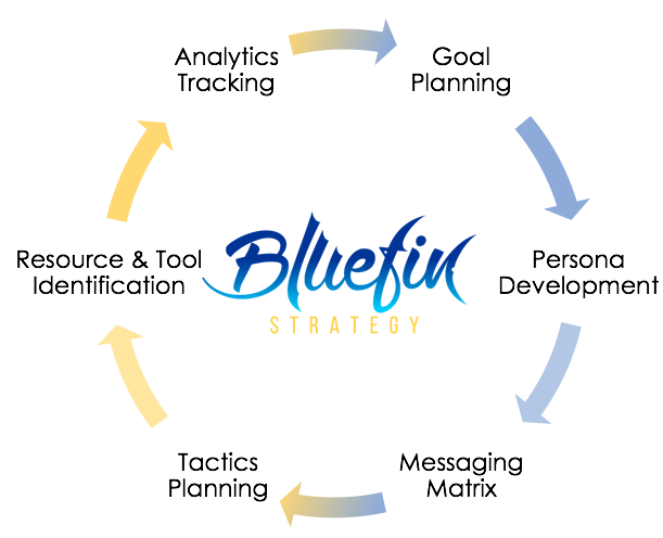 bluefin strategy digital strategy planning process